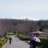 早春の白山