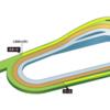 第312R 京都競馬 スワンS 参考データ