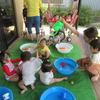 こすもす保育園 夏の子どもたちの様子
