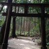 屋久島に行ってきました(白谷雲水峡トレッキング編)