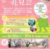 2019年相模女子大学花見 3月30日(土)31日(日)開催!