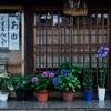 コーヒー豆屋さんの福袋。