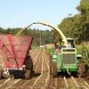 牧草の切断長問題