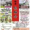 春の訪れを感じる「追分梅園 観梅会」(奈良市)