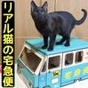 リアル猫の宅急便!!クロネコヤマトのダンボールで猫と遊んでみた!【作り方】