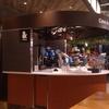 国内初、ロボットカフェ。行って分かった、すごくないのにすごい点。