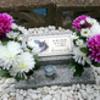 えびすちゃんのお墓が出来ました。