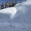 1月の人気記事。ジョセササイズ/生活の雪対策/十日町弁/イルカトラグリル/十日町シネマパラダイス