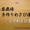 信州土産は、松本城の近く小口わさび店のわさび漬けがオススメ