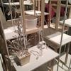日本の家展-東京国立近代美術館-