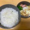 【お弁当】11月14日のお昼