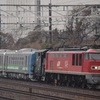第406列車 「 甲216 JR北海道 H100形気動車(H100-1、H100-2)の甲種輸送を狙う 」