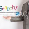 雑記:当ブログのアクセス元はGoogleが半分を占めているらしい。