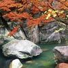 【昇仙峡の紅葉】駐車場からバス→仙娥滝散策ルートがおすすめ!!