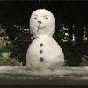 第17話 雪、襲来