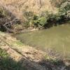 『谷田谷池』静岡県掛川野池群バス釣り完全攻略マップ