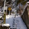 雪の晴れた朝