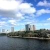 春の東雲運河