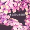 都心にある癒しの庭 椿山荘に紫陽花を探しに行こう