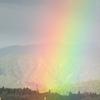 虹のカーテン?