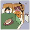 猫による早朝のいざない