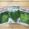 野菜の種を買いました