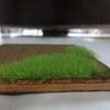 ノッホのグラスマスター2.0(芝生の達人)の使い方と草の立ち具合を紹介