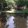 どんどの池(上越市大潟区九戸浜)−新潟県の名水
