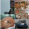 『函館』は風光明媚で美味いモンの街だね 🐙