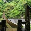 静岡「夢の吊り橋」に連休中の雨天時にいってきたのでまとめ【写真も】