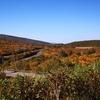 栗駒山に紅葉を見に行こうよう(激熱ギャグ)ツー