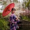 上海共青森林公園ポートレート桜と海棠・浴衣編