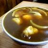 【翁そば】表面張力だらけのカレーうどん!浅草で大ボリュームの麺を味わおう!
