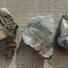 チャームで石と水草購入