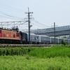 第936列車 「 甲98 JR北海道 261系気動車の甲種輸送を狙う 」