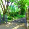 ここだけは知っておきたい!五反田の散歩スポット!