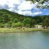 羽高湖森林公園キャンプ場⑸