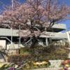 信州上田城の再建