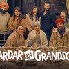最後の願い(Sardar Ka Grandson)