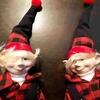 【カナダケベック州発祥】クリスマスの妖精Lutinルタン人形を捕まえる?!