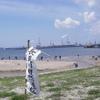 5月30日 干潟観察会
