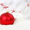 【セブンネット限定】クリスマスケーキだけじゃなかった!今年のKing & Princeからの2019クリスマスプレゼントはまさかの豪華二本立て!予約開始のキンプリグッズを紹介します
