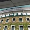 阪神タイガース頑張れー♬ iPhone修理の情報もどうぞ!