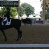バンコクで馬場馬術(ドレッサージュ)競技大会を見学@サナームパオ陸軍駐屯地内