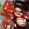 香港で海鮮、熟食中心:エビの炒め物、トコブシの陳皮蒸し、ほたての春雨ニンニク風味とエイのトウチ炒めなど(Ap Lei Chau大街)