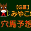 【GⅢ】みやこS 穴馬 結果 回顧