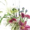 なぜ、お部屋に生花を飾るのか