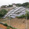 太陽光発電設備を巡ってきました