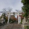 2010 京都紅葉前線レポ 11月25日(2)
