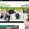 1月29日(月)・1月30日(火) 💰当日近日割引情報💰(年間クーポンキャンペーン)